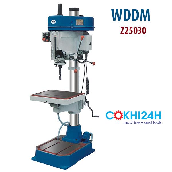 Máy khoan ta rô lỗ sâu WDDM Z25032